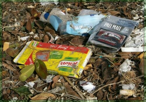 Cigarettes-a-Major-Cause-of-Litter1.jpg